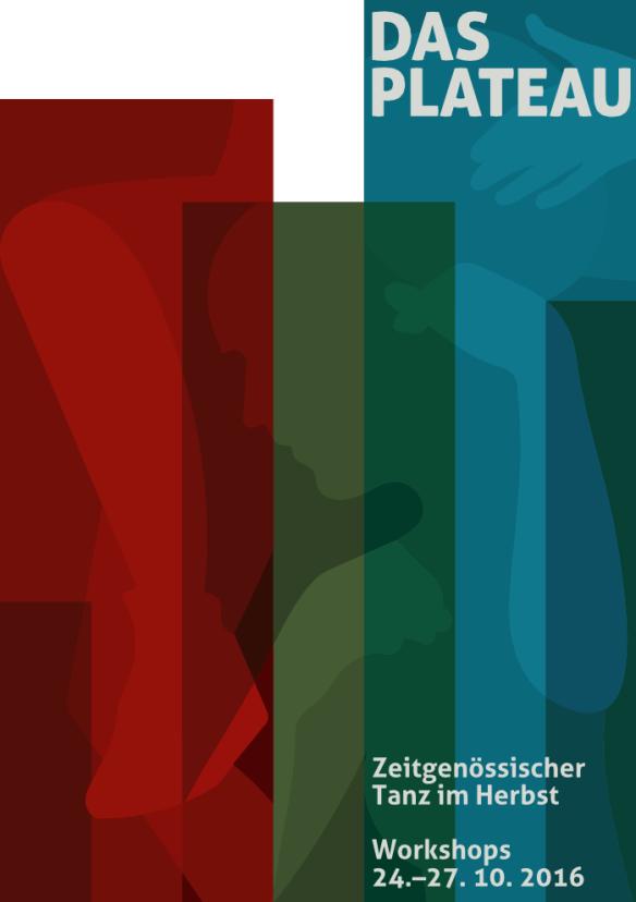 flyer-plateau image